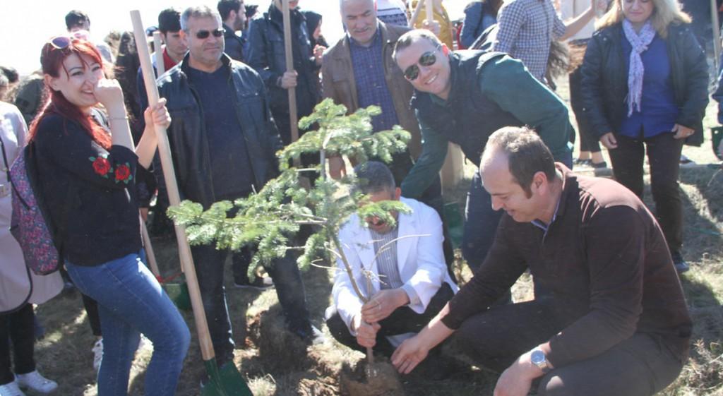 Ağaç Dikimi Etkinliği