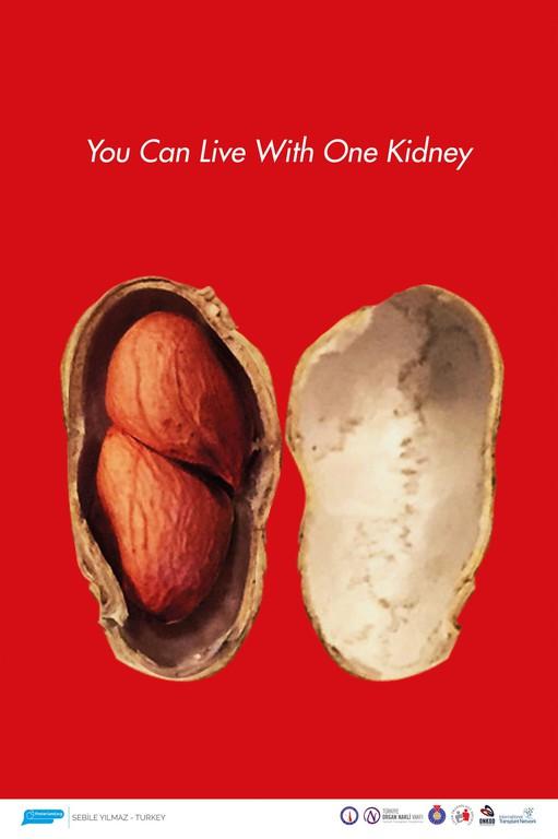 Uluslararası Organ Bağışı Konulu Afiş Yarışması